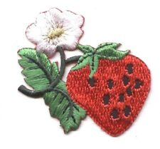 Strawberry - White Flower Blossom/Fruit/Food Iron on Applique/Embroidered Patch