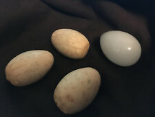3 vintage wood replacement eggs and one glass egg, makes great easter eggs