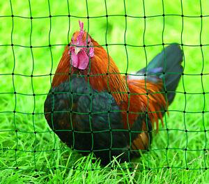 Geflügelzaun Hundezaun Geflügelnetz Hühnerzaun Hund 105cm Hoch 15m, 25m o. 50m