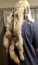 Coyote pelt Head Dress Native American. Canadian pelt