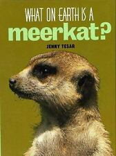 What on Earth Is a Meerkat? by Jenny Tesar