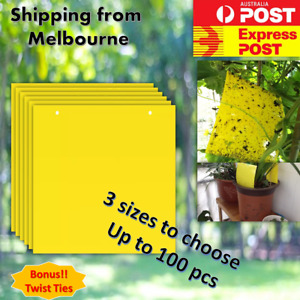 10-100pcs Insect Fly Trap Yellow Sticky Glue paper Catcher Killer Aphids Wasp AU