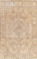 Semi-Antique Traditional MUTED Worn Distressed Area Rug Hand-Knotted Wool 6'x10'