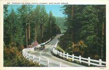 1933 Pines Pacific Highway Salem Oregon Andrews postcard 3626