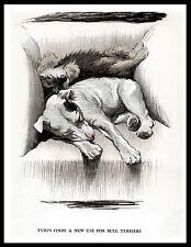Bull And Dandie Dinmont Terrier Sleep In Chair Vintage Style Dog Print Poster