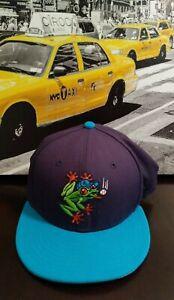 Evertt Auqasox MILB Baseball vintage New Era 59fifty 7 1/2 rare Fitted cap