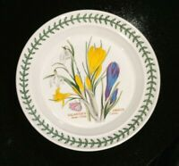 Beautiful Portmeirion Botanic Garden Snow Drop Crocus Bread Plate