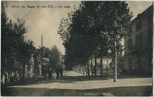 1914 Salice Terme - Saluti dai Bagni di Salice Terme, un Viale - FP B/N VG ANIM