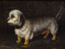 19th Century English School Dandie Dinmont Terrier Dog Painting by R TAYLOR