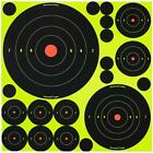 Shoot N C Air Gun Rifle Targets by Birchwood Casey self adhesive 2