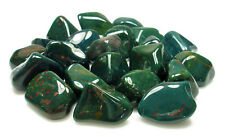 TUMBLED - (1) MED/LG BLOODSTONE Crystal w/Description Card- Healing Stone Reiki