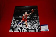 STEVE KERR golden state warriors chicago bulls signed PSA/DNA 11x14 photo 2