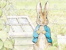 Helen beatrix potter peter rabbit art imprimé poster photo HP336