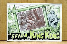 LA SFIDA DI KING KONG fotobusta poster R.Fraser M.Wrixon The White Pongo 1945 L4
