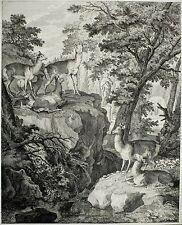 Johann Elias RIDINGER-Caprioli in un bel parco animali-ACQUAFORTE 1738