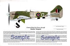 Tempest fighter signed by Ace RAF Pilot, Aviation Art, Ernie Boyette