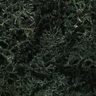 WOOL164 Lichen Dark Green Woodland Scenics