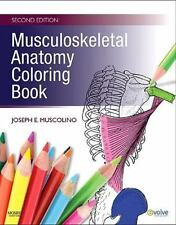 NEW - Musculoskeletal Anatomy Coloring Book, 2e