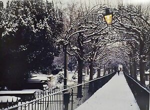 Birdcage Walk, Clifton Bristol. Full Colour Photographic Print, 16 x 12 Stunning