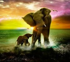 """Big Love elephant mother child  Large Wall Canvas Picture 20"""" X 30"""""""