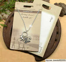 Horse & Western Jewellery Saddle Up Necklace Gift Set Silver