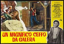 CINEMA-fotobusta UN MAGNIFICO CEFFO DA GALERA douglas, lester, eastman, CALIC