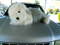 "Giant Jumbo 48"" plush stuffed soft Old English Sheep Dog"