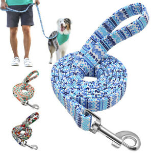 5ft Nylon Dog Leash Clip Rope Soft Padded Puppy Walking Leads for Small Dogs