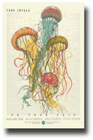 Tame Impala Poster Concert Slow Rush 11 x 17 inches Jelly Fish