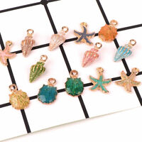 13 Pcs Conch Sea Shell Pendant DIY Charms Jewelry Making Handmade Accessories