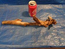 New listing # 721 Driftwood Aquarium Reptile Taxidermy Driftwood