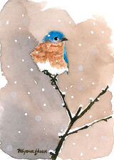 "Art print 2.5""x3.5""-Bluebird in a mild winter, Bluebird art print, Gift idea"