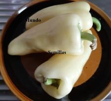Pepper White Capsicum Sweet 25 Seeds - Seeds Vegetable Garden