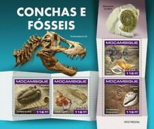 Mozambique - 2019 Shells and Fossils - 4 Stamp Sheet - MOZ190224a