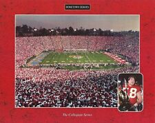 UNIVERSITY OF WISCONSIN BADGERS 8x10 Football Stadium Photo '94 ROSE BOWL CHAMPS