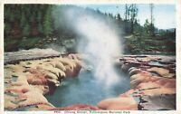Postcard Oblong Geyser Yellowstone National Park Wyoming