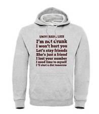 Sweatshirt Universal Lies, Grey Hooded, Funny With Lies IN English