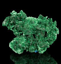 """4"""" Dark Green MALACHITE PSEUDO AZURITE Sharp Crystals Milpillas Mexico for sale"""