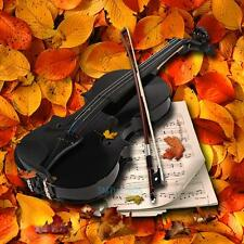 1/8 Full Size Acoustic Violin Fiddle Black with Case Bow Rosin for Beginner Gift