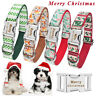 Christmas Dog Collar Personalised Puppy Name ID Tag Engraved Small Medium Large