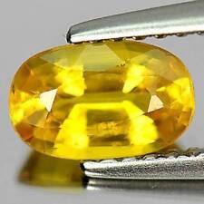 Thailand Excellent Cut Loose Sapphires