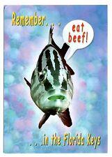 Fish Florida Keys Postcard Eat Beef Humor Funny Great Fishing Unposted