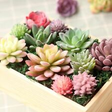 Green Purple Red White Blue Flocking Artificial Succulents Plants Home Garden