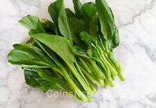 """500 Seeds Choy Sum """" Chinese Flowering Cabbage """"  Tsoi Sum, Cai Ngot, Pak Choy"""