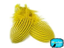 1 Dozen Yellow Silver Pheasant Plumage Barred Feathers Fly Tying Jewelry Costume