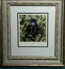 David Shepherd Baby Gorilla Signed limited edition Framed Museum Glass