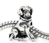 Labrador Retriever Dog Pet Puppy 3D Animal Charm for Silver European Bracelets