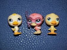 Littlest Pet Shop petshop lot bird oiseau petit canard