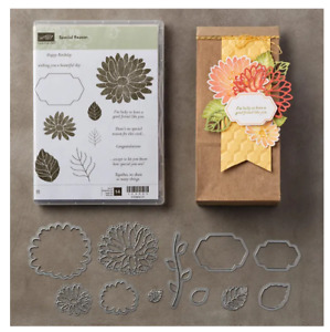 Stampin Up retired, SPECIAL REASON Stamp SET & STYLISH STEMS Dies ~ Mothers Day