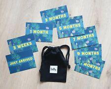 Baby Milestone Cards - 0-12 months Cactus Design